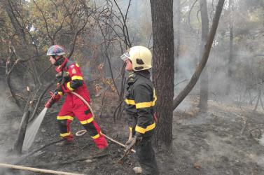 Slovenskí hasiči v Grécku zápasia s horúčavami a presunom ohňa do korún stromov