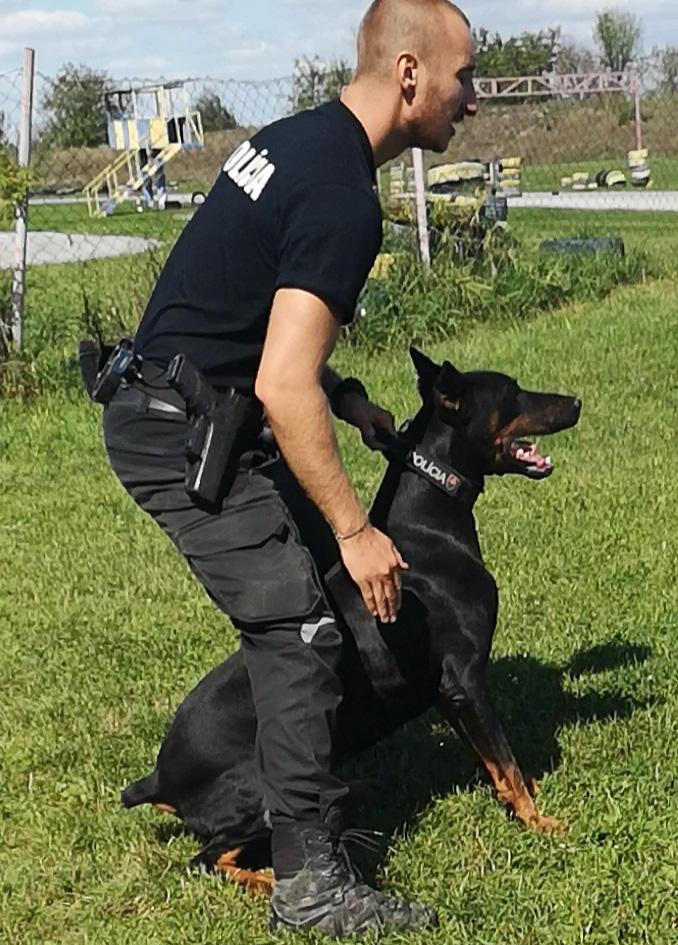 Polícia: Pes Iron vyňuchal ukradnutý trezor