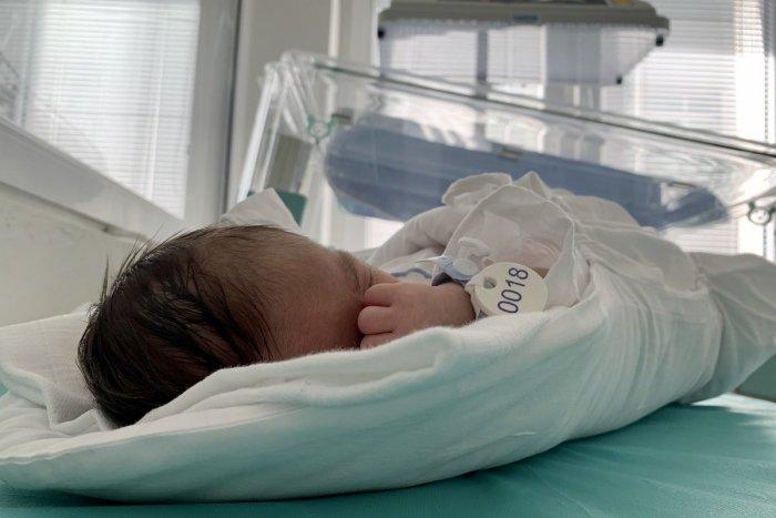V hniezde záchrany v UNLP našli novonarodeného chlapčeka
