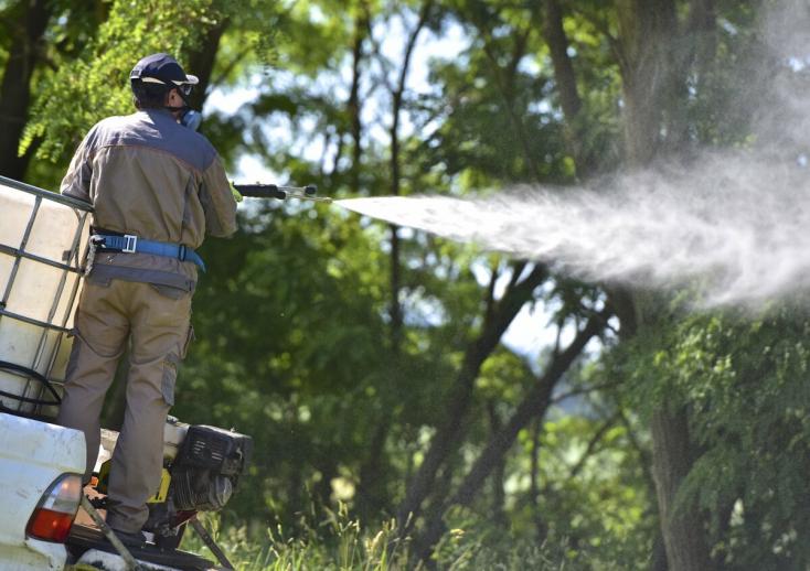 Dunajskostredský okres bude robiť postreky proti komárom pre ich enormný výskyt