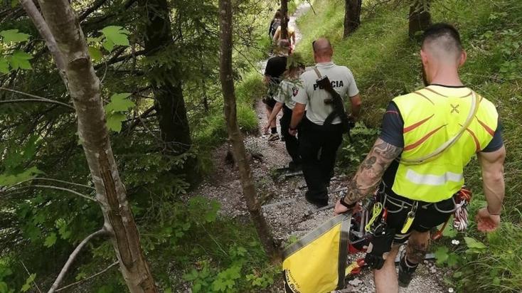 Turistom skrížil cestu medveď, o pomoc požiadali horských záchranárov