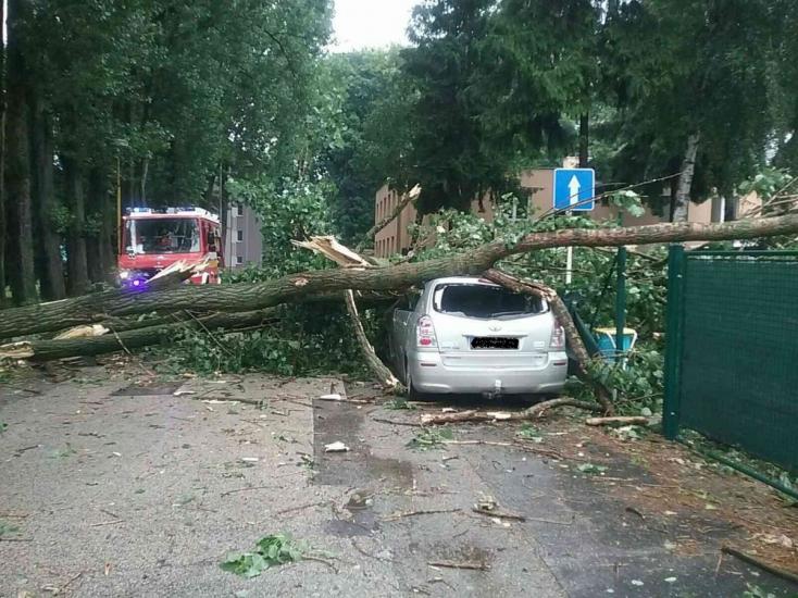 SHMÚ: Búrky s krúpami môžu potrápiť Slovensko aj v nedeľu