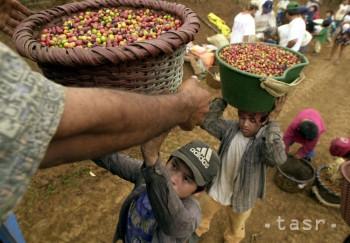 Na Slovensku sa vlani predalo 70 ton kávy s certifikáciou Fair trade